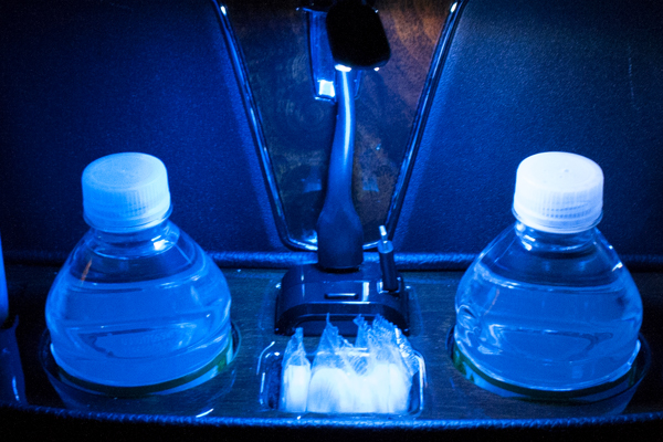 USB Charging Station with Illumination for the Limo Caddy